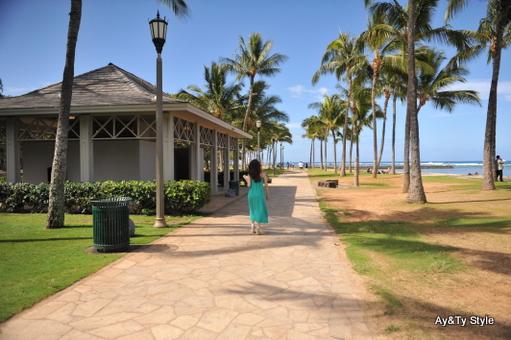 hawaii10-3 -(22).JPG